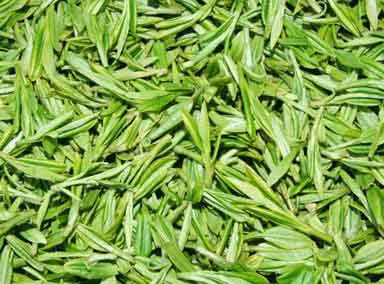 tea-leaves-lots.jpg